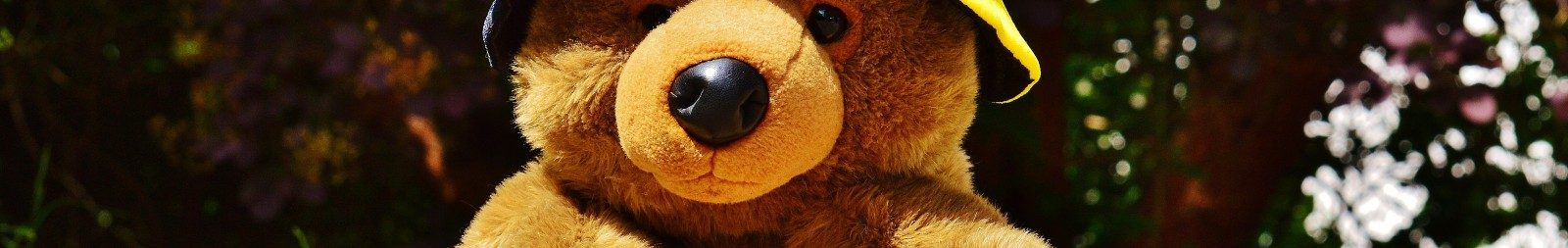 sport-play-sweet-cute-france-bear-611418-pxhere.com.jpg